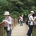 竹山天梯37.jpg