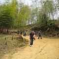 竹山天梯41.jpg