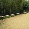 竹山天梯42.jpg