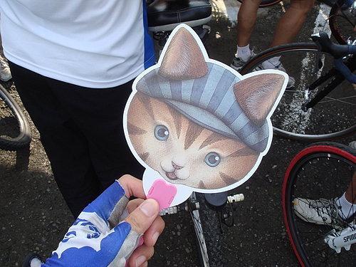 可愛的貓咪小扇子.jpg