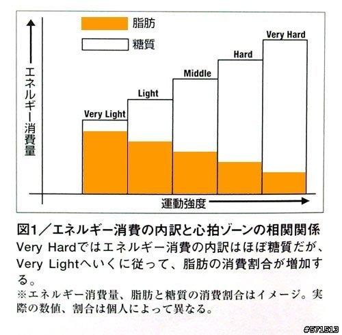 脂肪與醣燃燒比例圖.jpg