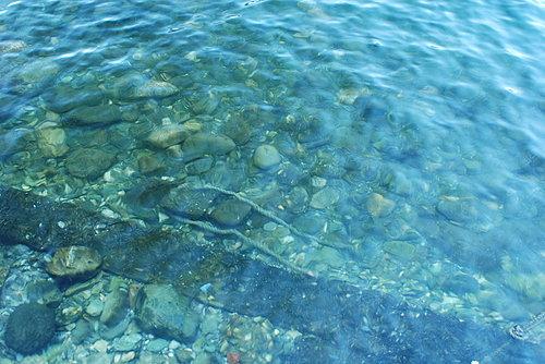 花蓮美景5---水也太清澈了吧.jpg