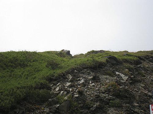埔里---武嶺沿途的風景1.jpg