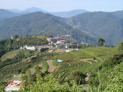 埔里---武嶺沿途的風景8.jpg