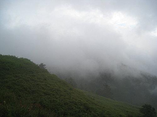 埔里---武嶺沿途的風景14.jpg