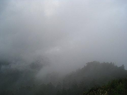 埔里---武嶺沿途的風景15.jpg