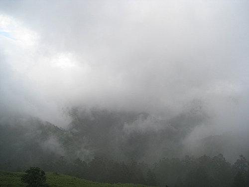埔里---武嶺沿途的風景16.jpg