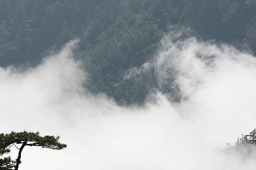一下子 就全部被山嵐佔據了.jpg