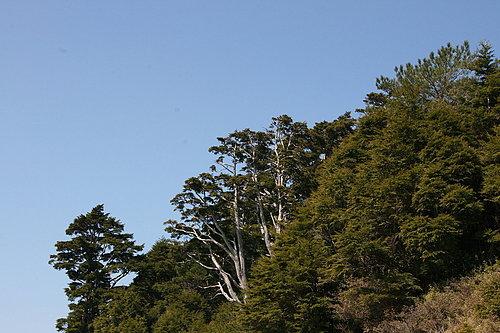 沿途的壯闊景色1.jpg