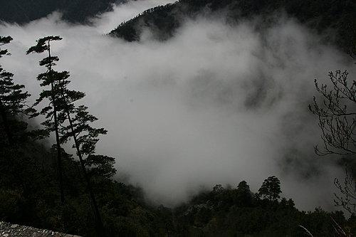 隨時在改變的山嵐 真是美呆了.jpg