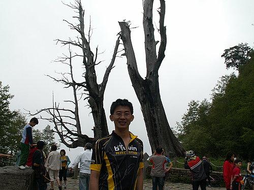 夫妻樹前 --- 小葉子再來一張.jpg