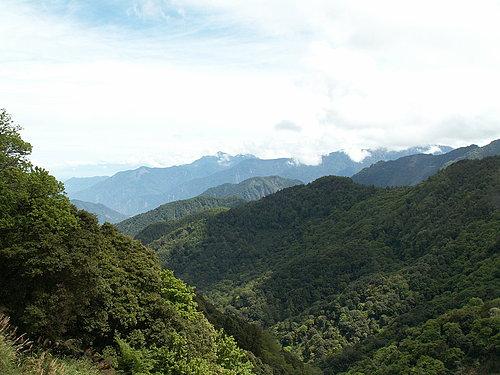 塔塔加秀麗的景色5.jpg