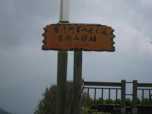 總算抵達 海拔1200公尺高的 碧湖休閒觀光茶園.jpg