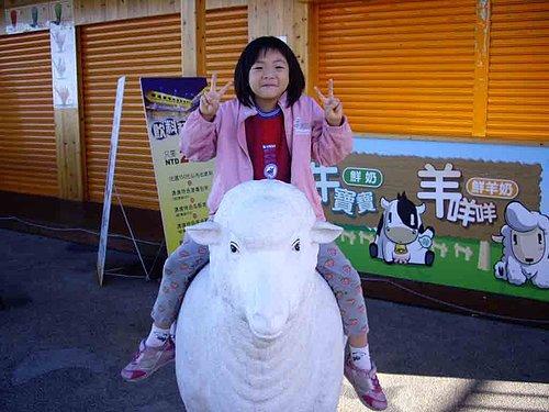 啦啦隊成員 邑濃 表演馴羊招數 3.jpg