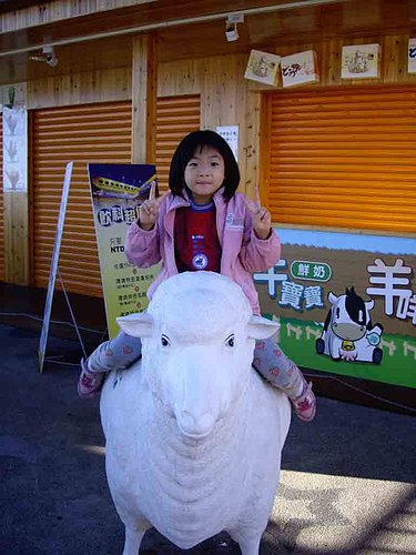 啦啦隊成員 邑濃 表演馴羊招數 4.jpg