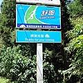 杉林溪12生肖----龍.jpg