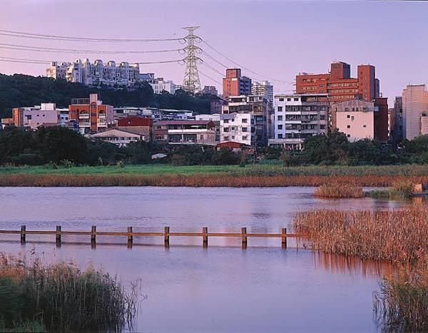 關渡濕地1