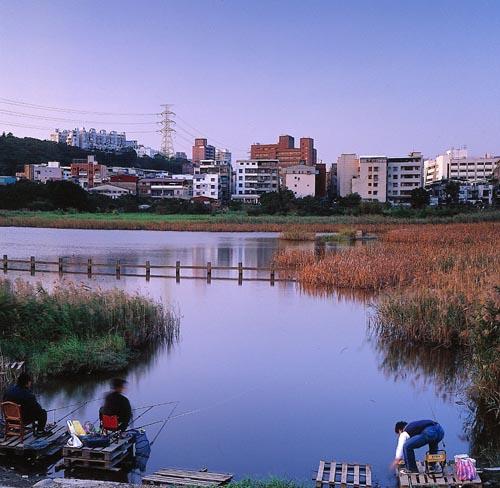 關渡濕地2