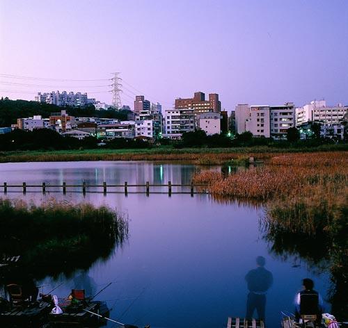 關渡濕地3