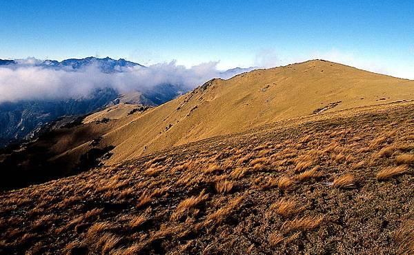 三叉山草原
