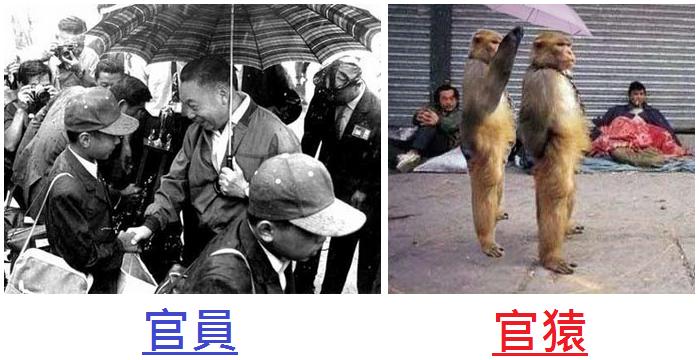 官員-官猿