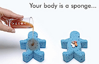 vemma-your-body-sponge.jpg