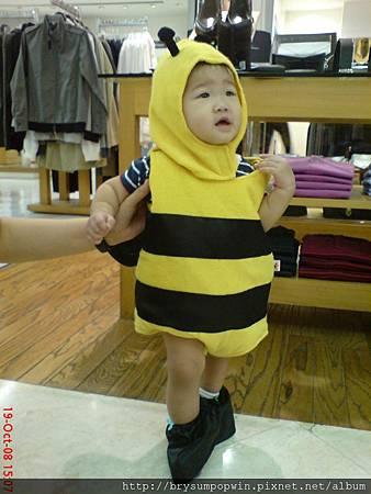 Bee Winnie.jpg