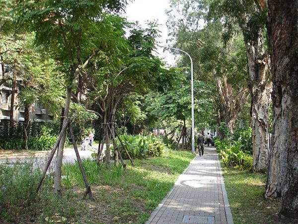 步道植栽3.JPG