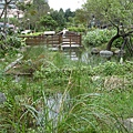 生態公園濕地.JPG