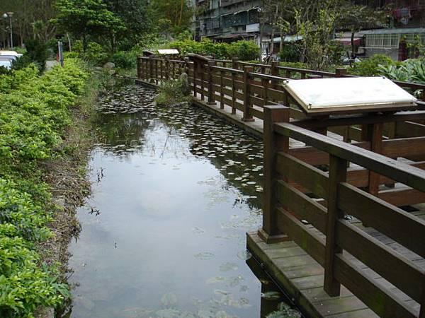 生態公園溪邊.JPG