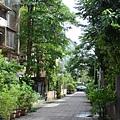 後院綠化4.JPG
