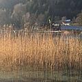 富修湖2.jpg