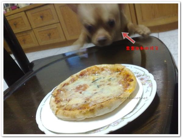 蕃茄乳酪手工披薩 7.jpg