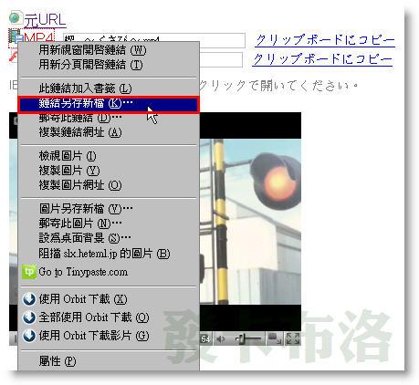 zoome2.jpg