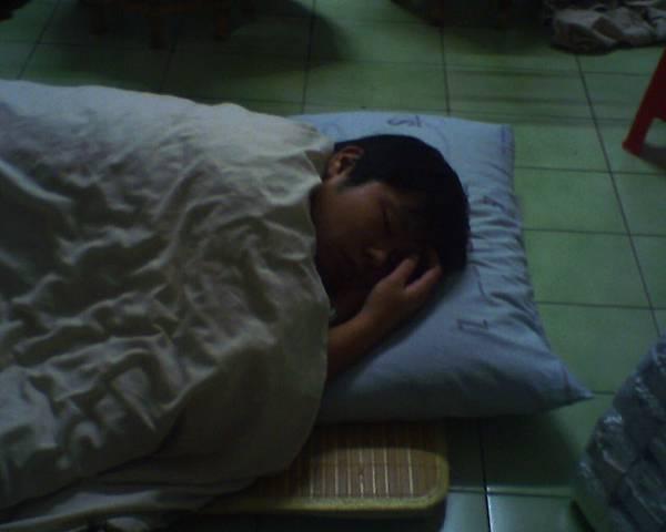 小橘睡覺中