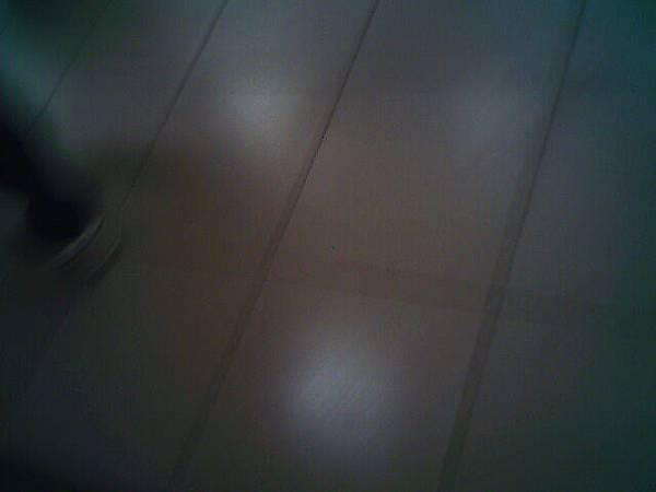 IMG0361A.jpg