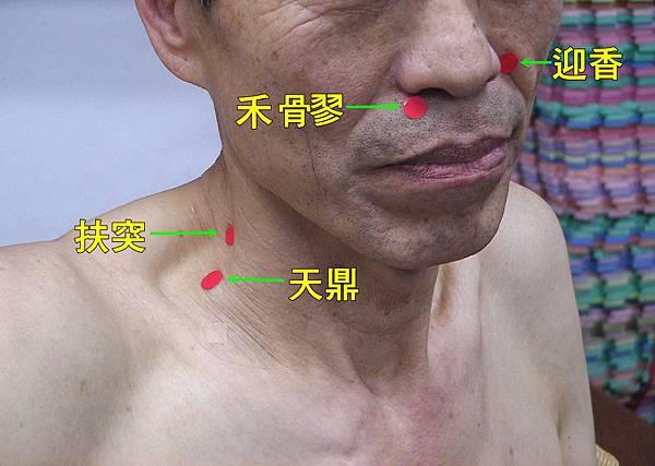 手陽明大腸經穴位4