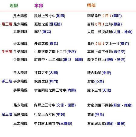 十二經標本部位表