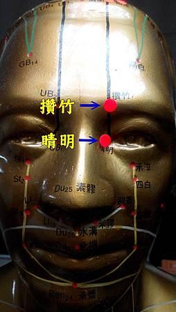 太陽膀胱經1.jpg