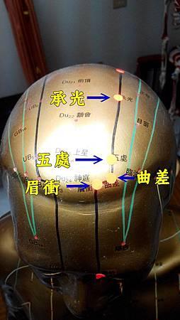 太陽膀胱經2.jpg