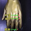 手少陽三焦經1