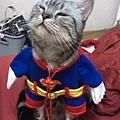 超貓出任務