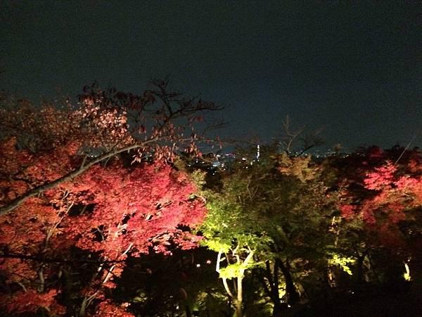 相片 2014-11-17 19 40 55.jpg