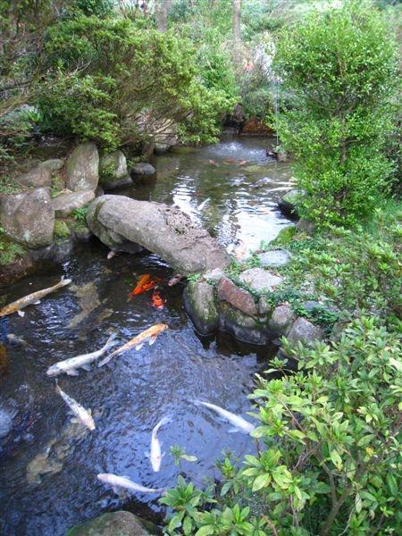 2008.10.19 金瓜石遇到愛 087.jpg