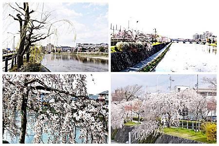 鴨川 (109 122 .126.139).jpg