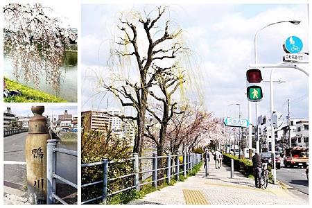 鴨川 (124+145).jpg