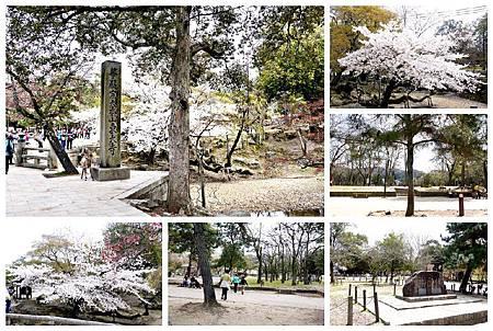 P1440940 奈良~.東大寺. (3.1.2.5.6.8).jpg