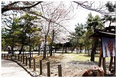 P1440940 奈良~.東大寺. (9).jpg
