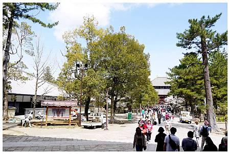 P1440940 奈良~.東大寺. (12).jpg