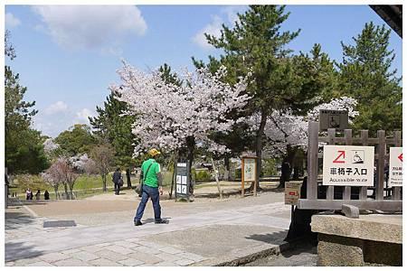 P1440940 奈良~.東大寺. (19).jpg